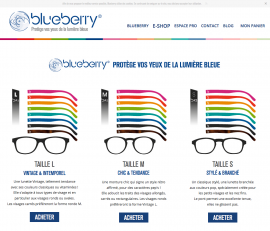 www.blueberryglasses.com